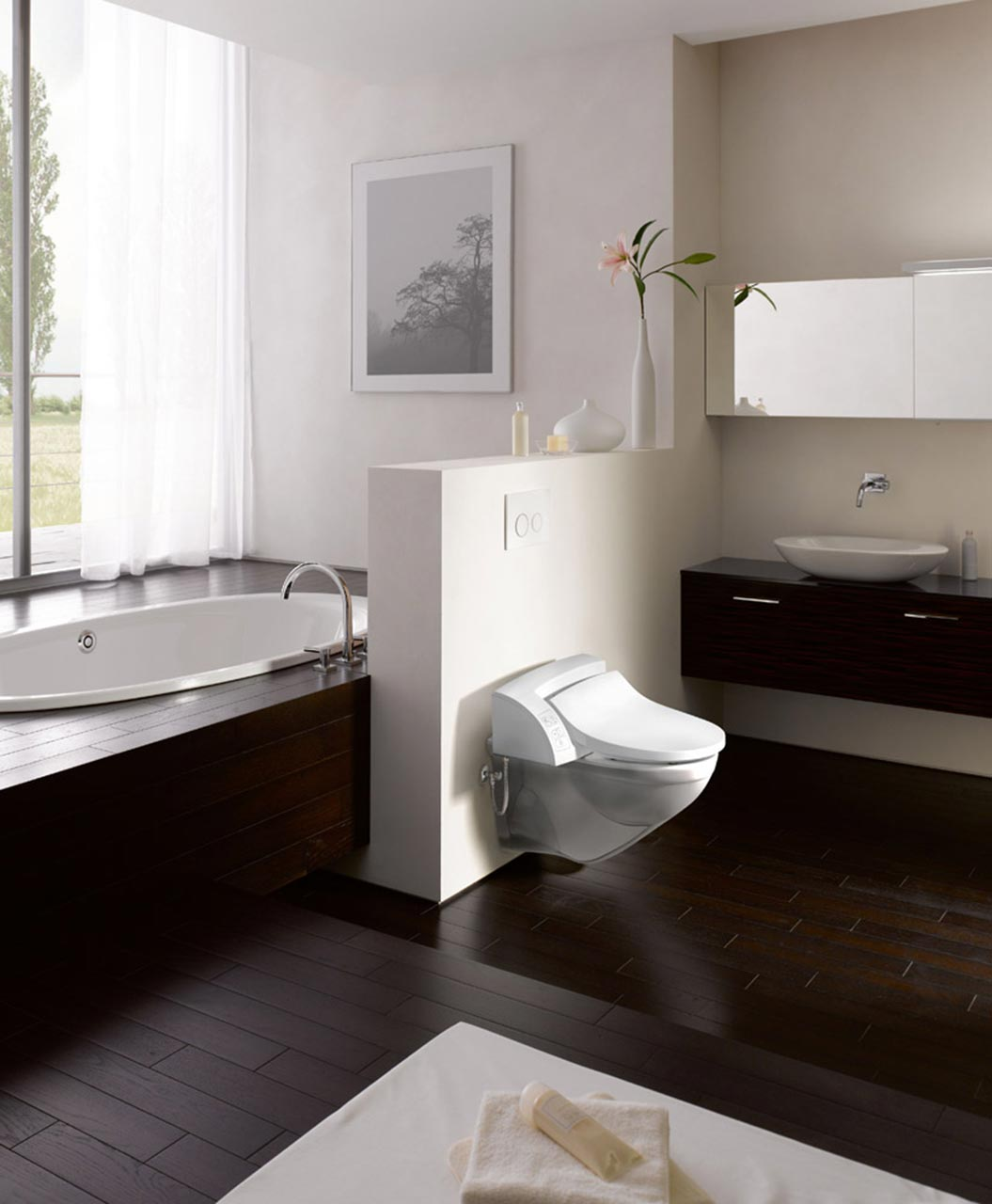 Geberit AquaClean 5000 Plus