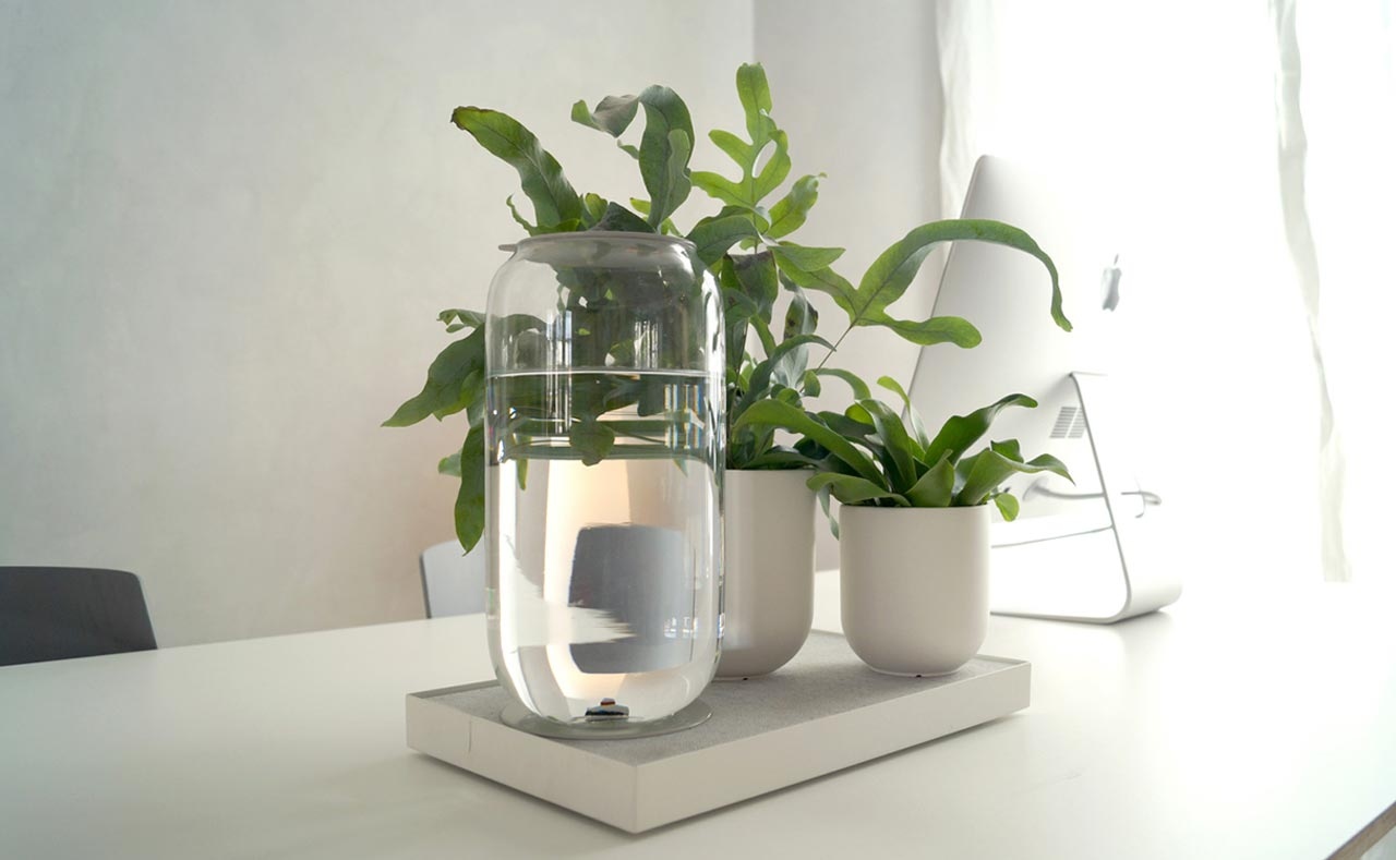 Tableau, a tray which waters your plants