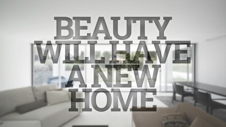 Beauty will have a new home
