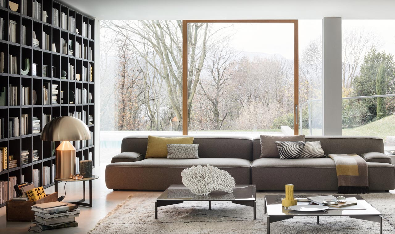Living Room Furniture Bookcase And Sofa