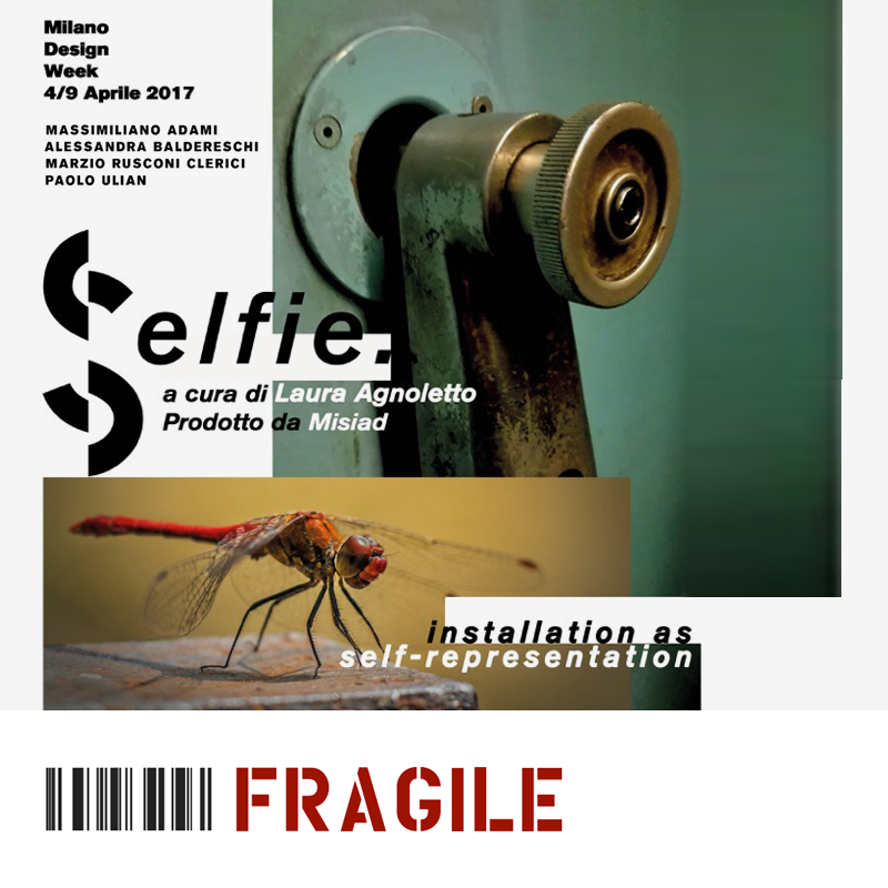 Fragile: Selfie. Installation as Self-representation